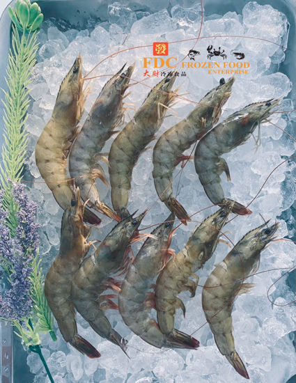 Picture of UDANG PUTIH / 白虾   26/30 (700g)
