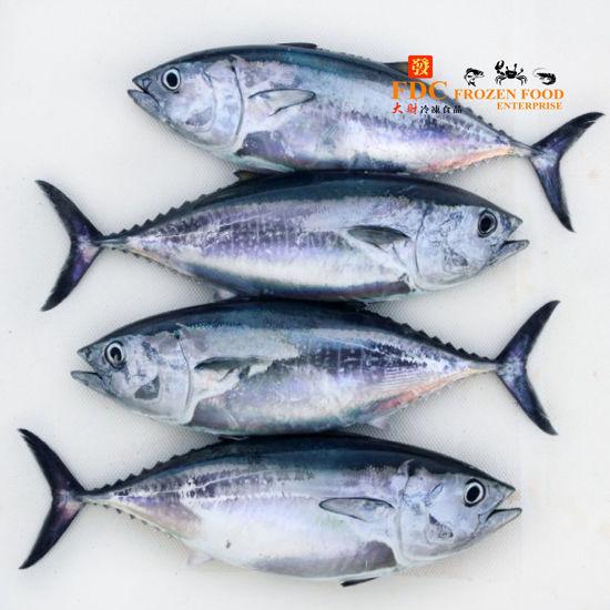 Picture of TONGKOL PUTIH  /  金枪鱼 <br> ( 850g & 1.7kg)