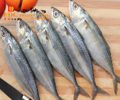 Picture of IKAN SELAYANG  / 吊景魚  <br>( 8ekor x 650g +- )
